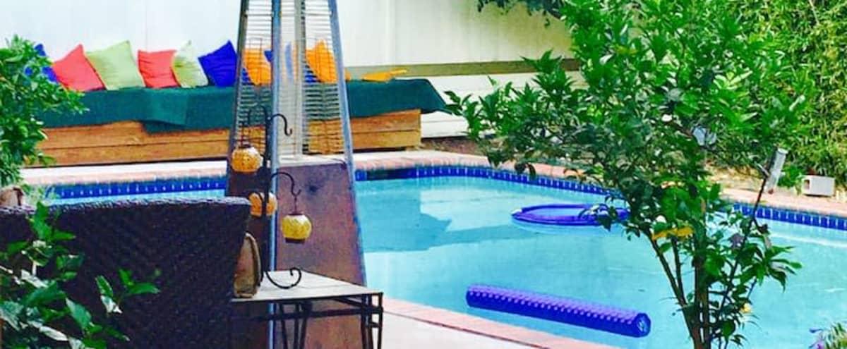 Beautiful Los Feliz Oasis Pool House in Los angeles Hero Image in Los Feliz, Los angeles, LA