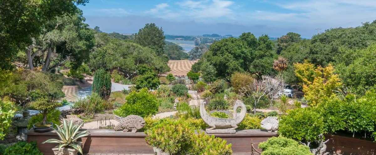 An oasis surrounded by natural beauty by the ocean in Royal Oaks Hero Image in undefined, Royal Oaks, CA