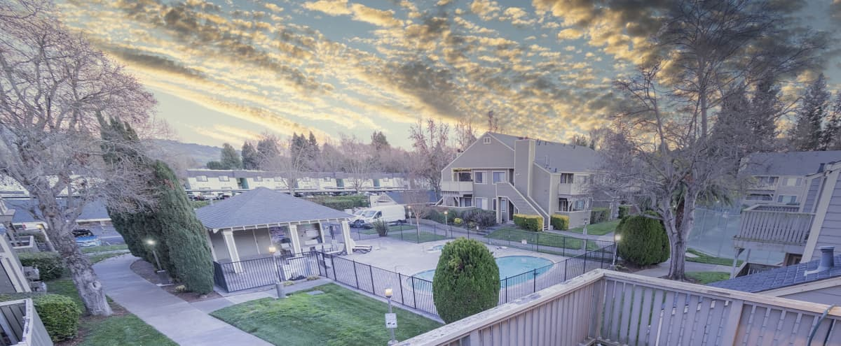 Bright, Open Concept Condo with Natural Light in Rohnert Park Hero Image in undefined, Rohnert Park, CA