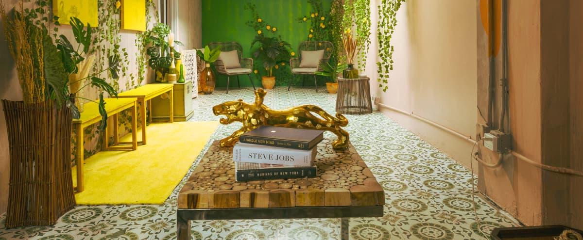 Jungle Room: Antique Boho @The JOO'P in Los Angeles Hero Image in Central LA, Los Angeles, CA