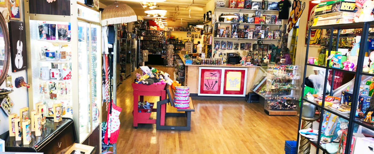 Huge Vintage Toy Store - Party like it's 1989 in CHICAGO Hero Image in Logan Square, CHICAGO, IL