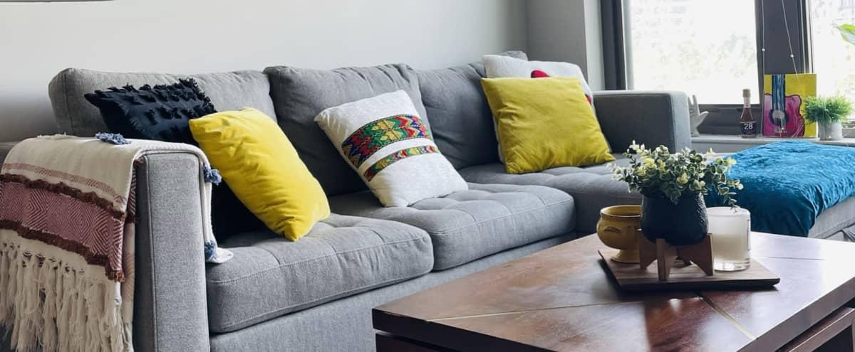 Vibrantly Designed Apartment in Crystal City in Arlington Hero Image in Pentagon City, Arlington, VA