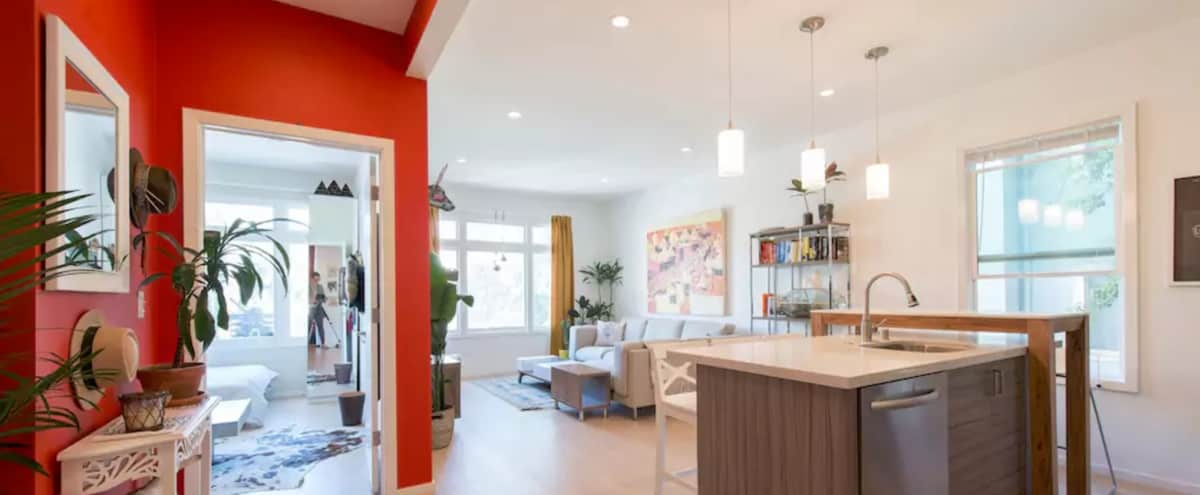 Vibrant Modern Mission Dolores Apartment in San Francisco Hero Image in Mission District, San Francisco, CA