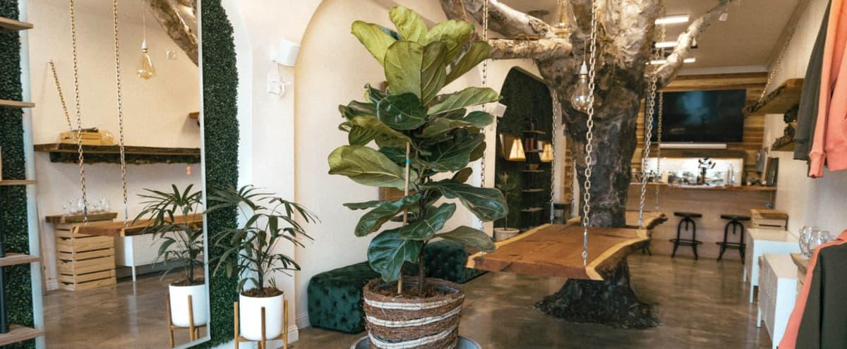 The Urban Lounge in El Cerrito Hero Image in undefined, El Cerrito, CA