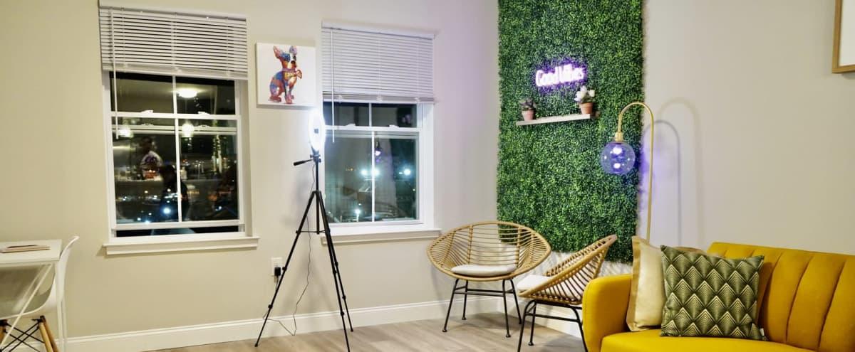Zen Bobo Suite Perfect for Podcasts in Newark Hero Image in Mount Pleasant/Lower Broadway, Newark, NJ