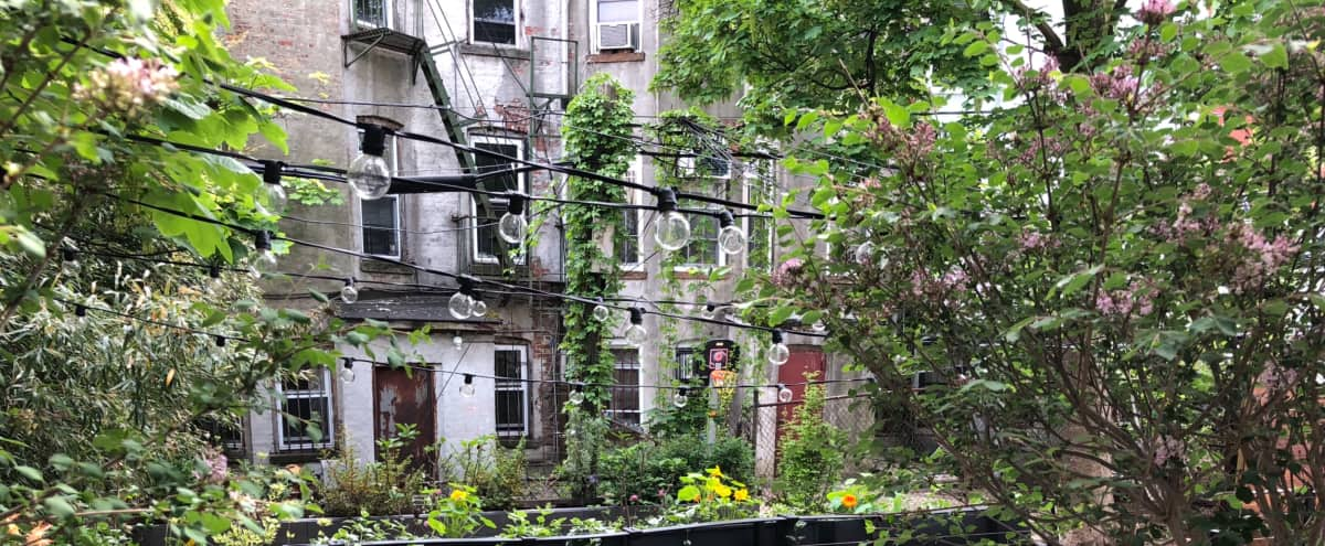 Brooklyn Brownstone Garden in Brooklyn Hero Image in Crown Heights, Brooklyn, NY