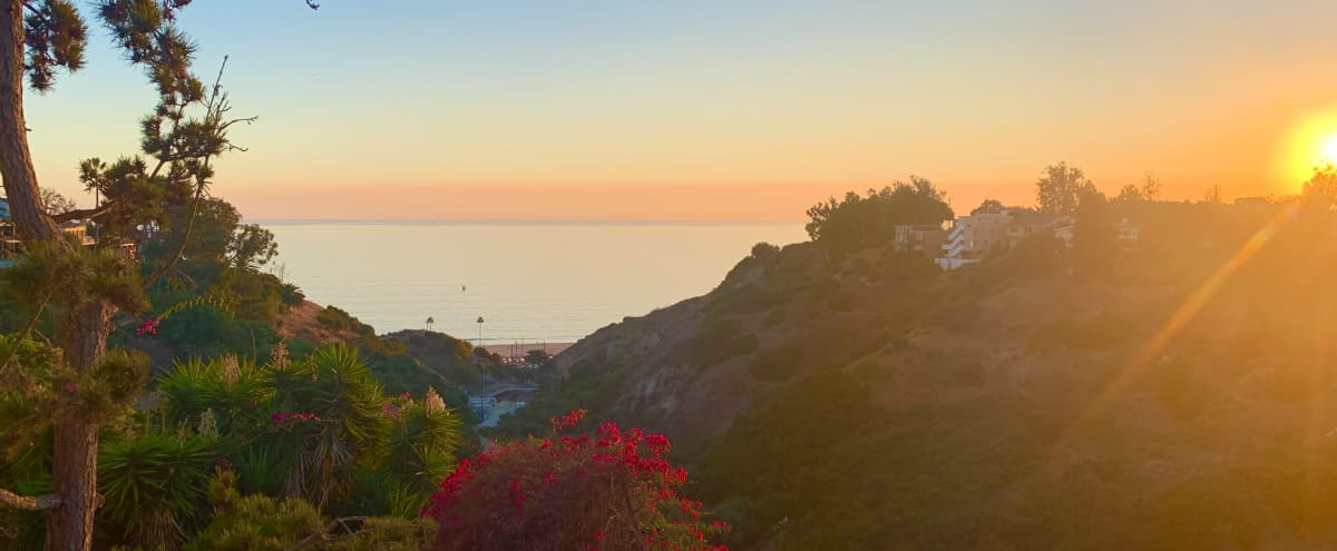 Romantic Ocean & Canyon View Suite w Sunroom & Kitchen leading onto Large Outdoor Patio. Amazing Light and Spectacular Sunsets. Tons of Free Parking! (Santa Monica/Pacific Palisades/ Malibu) in Pacific Palisades Hero Image in Pacific Palisades, Pacific Palisades, CA
