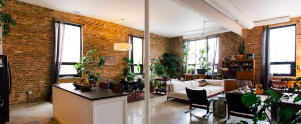 Bright And Sunny Open Loft With Exposed Brick Walls in Chicago Hero Image in Near West Side, Chicago, IL
