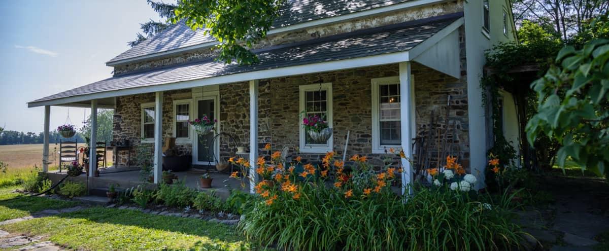 Historic 1700s Stone Farmhouse w/ Barn on Rural 13-acre Property in Upper Black Eddy Hero Image in undefined, Upper Black Eddy, PA