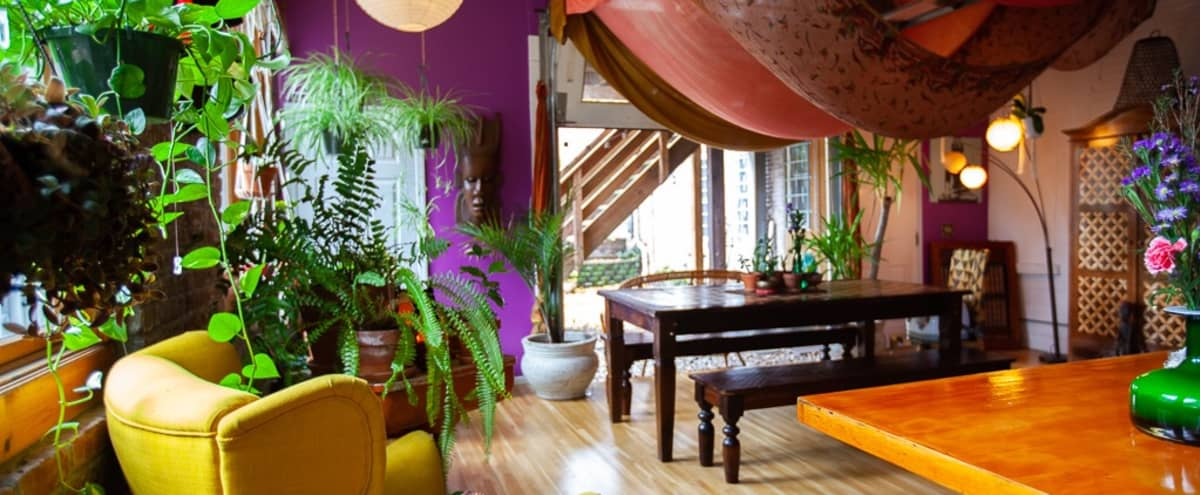 Colorful Therapeutic Loft in Newark Hero Image in South Broad Street, Newark, NJ