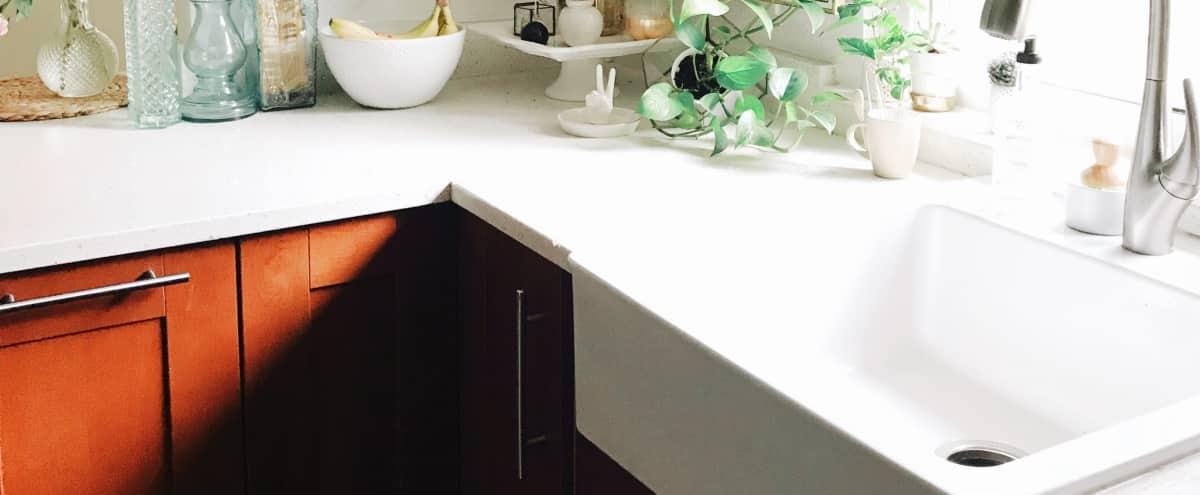 Kitchen Shoot Rental in Beautiful Updated Mid Century Home | Bohohouse Austin in Austin Hero Image in South Austin, Austin, TX