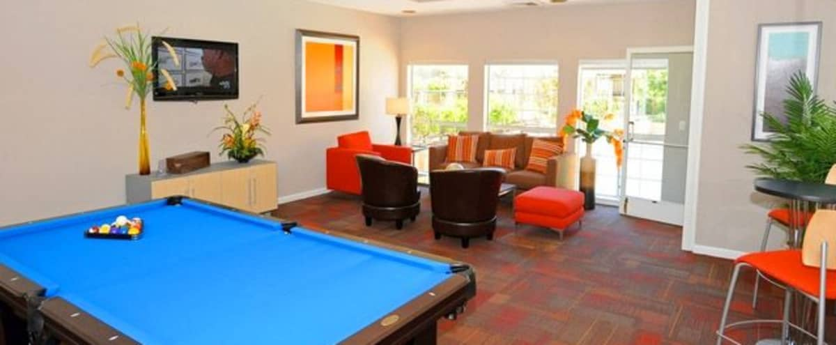 Perfect Sized Club House for Your Next Team Event in Daly City! in Daly City Hero Image in Serramonte, Daly City, CA