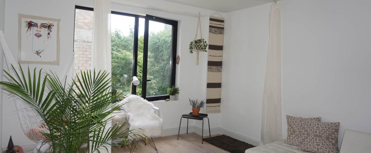 Modern Minimalistic Urban Jungle Studio Like Space in Brooklyn Hero Image in Bedford-Stuyvesant, Brooklyn, NY