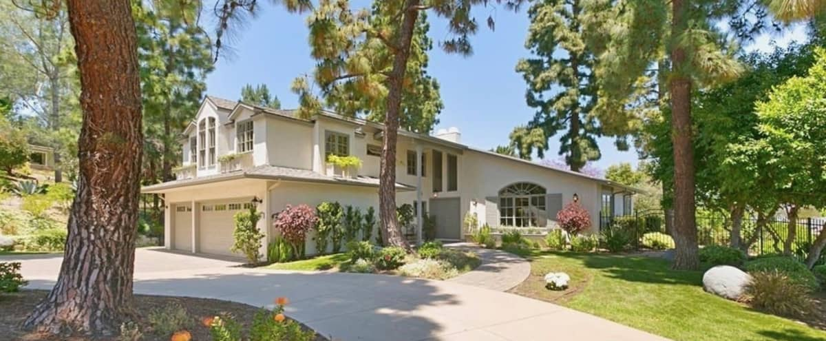 Magical  Home with Large Garden Nestled Amongst Mature Pine Trees in Encinitas Hero Image in undefined, Encinitas, CA