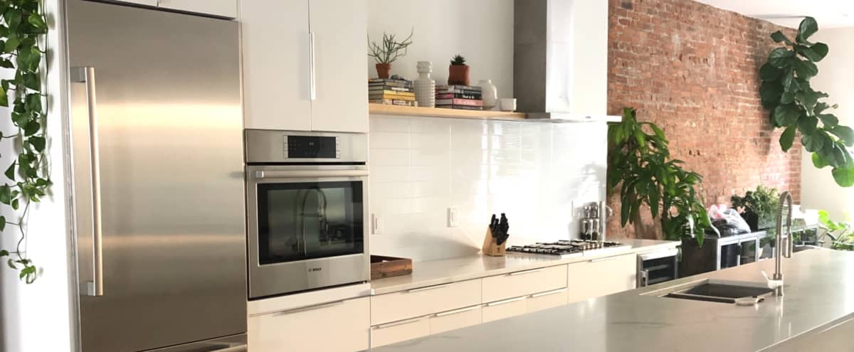 Brooklyn Townhouse with Spacious & Fully Equipped Kitchen w/ Private Backyard in Brooklyn Hero Image in Bushwick, Brooklyn, NY