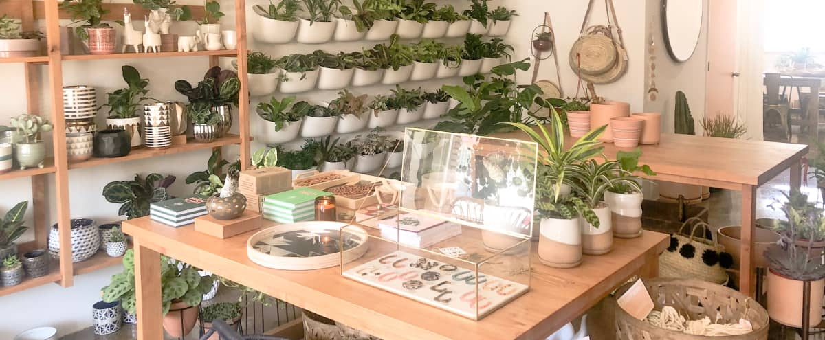 Gorgeous Boho Modern Boutique Storefront Event Space filled with Greenery in Valley Village Hero Image in Valley Village, Valley Village, CA