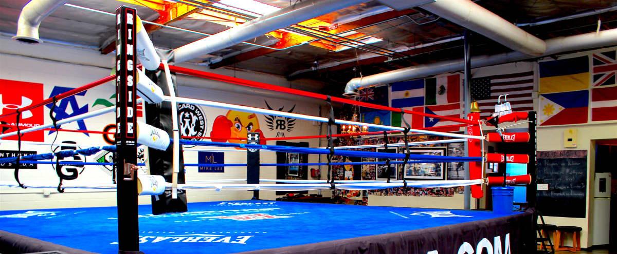 Spacious Boxing Gym in Santa Monica Hero Image in undefined, Santa Monica, CA