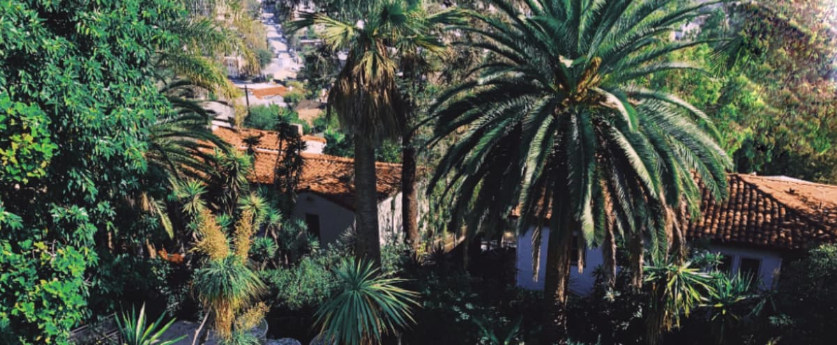 Beautifully restored villa with Old Hollywood pool and lush garden in Silver Lake in Los Angeles Hero Image in Silver Lake, Los Angeles, CA