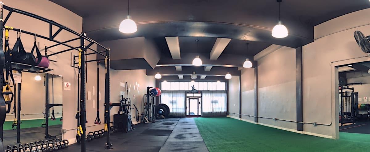 Centrally Located Emeryville Studio in Emeryville Hero Image in undefined, Emeryville, CA