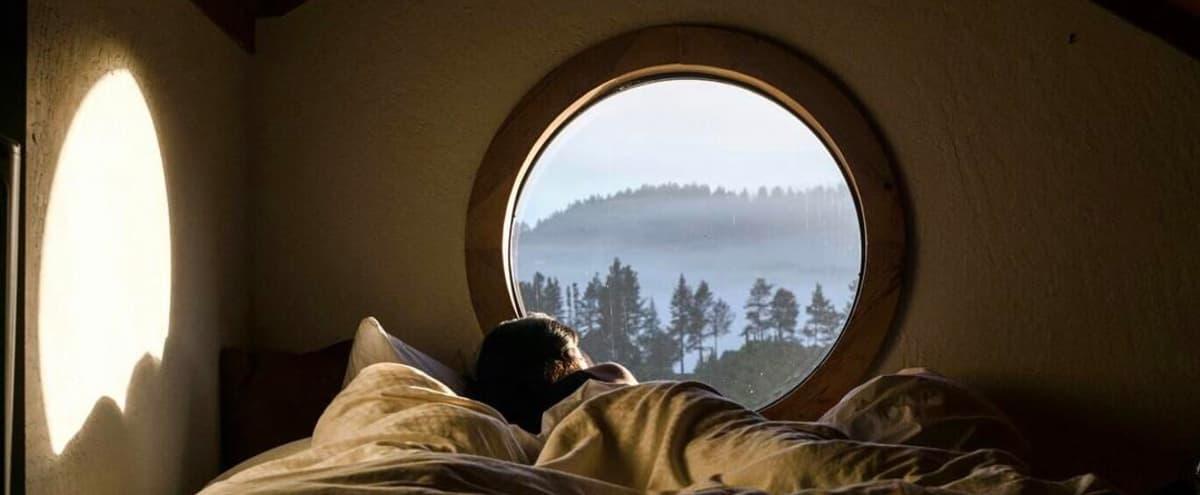 Majestic Retreat Centre in the Heart of Mendocino Nature Reserve in Philo Hero Image in undefined, Philo, CA
