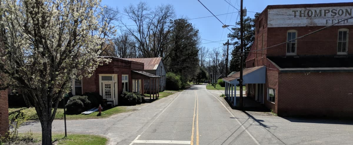 Turn of Century Town   StreetScapes in Haralson Hero Image in undefined, Haralson, GA
