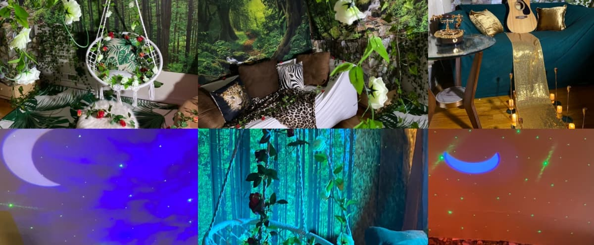 Jungle Themed Studio in Bronx Hero Image in Edenwald, Bronx, NY