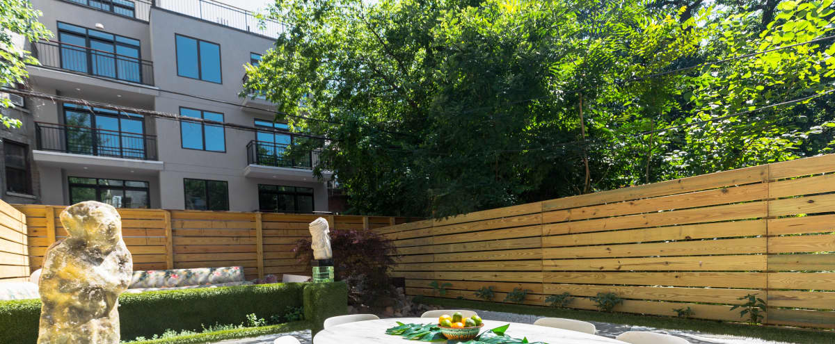 Gorgeous Brooklyn Brownstone Backyard with Unique Style in BROOKLYN Hero Image in Bedford-Stuyvesant, BROOKLYN, NY