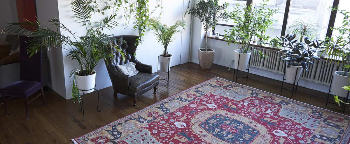 Clean white photo studio with abundant indirect light (and plants!) in Brooklyn Hero Image in Bushwick, Brooklyn, NY
