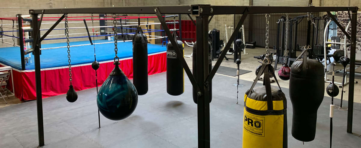 Boxing Gym - Fitness and Weightlifting area in a Warehouse. + in Los Angeles Hero Image in South Los Angeles, Los Angeles, CA