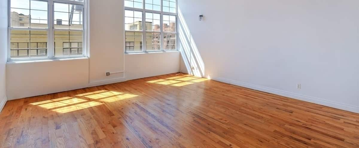 Dreamy Loft with Great Natural Light in Brooklyn Hero Image in Bedford-Stuyvesant, Brooklyn, NY