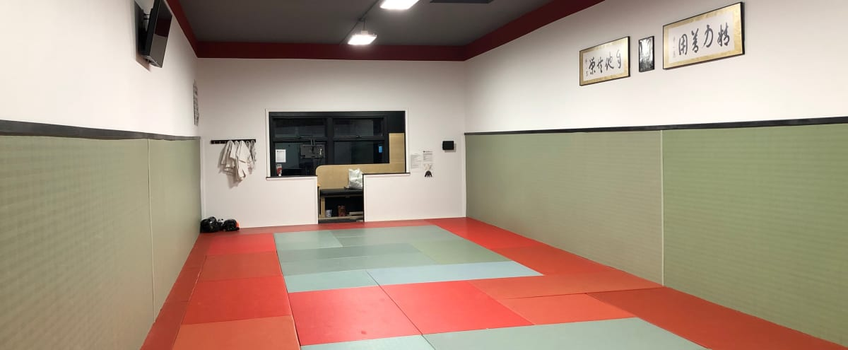 Spacious and Matted Martial Arts Studio in Staten Island Hero Image in Annadale, Staten Island, NY