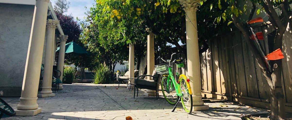 Beautiful Outdoor Backyard 3 mins walking from Santana Row in San Jose Hero Image in West Valley, San Jose, CA