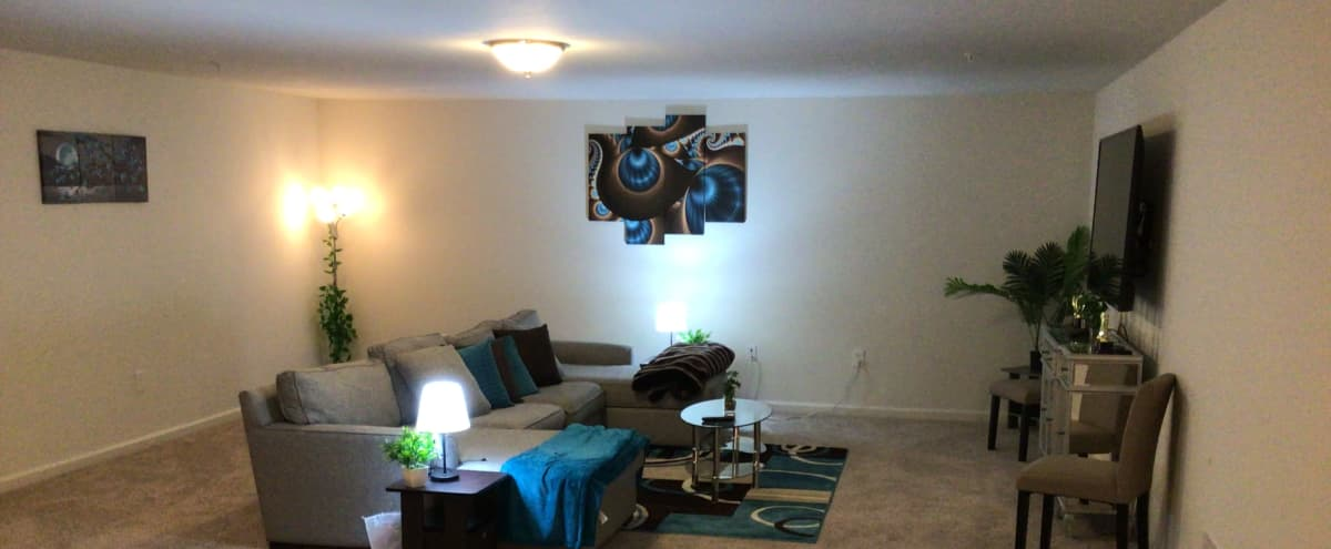 Spacious 1200 Sq Ft Space 30 Mins From Newark Airport W/ Lights & Pool Table! in Somerset Hero Image in undefined, Somerset, NJ