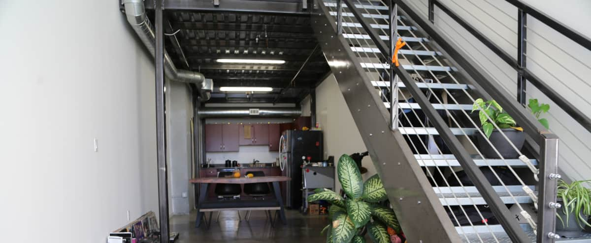 Downtown/USC Loft w/ Botanical and Industrial Decor in Los Angeles Hero Image in South Los Angeles, Los Angeles, CA