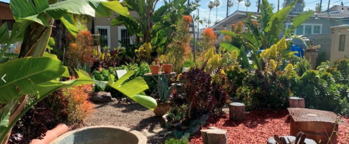 Spanish Bungalow with Backyard Oasis in Los Angeles Hero Image in South Los Angeles, Los Angeles, CA