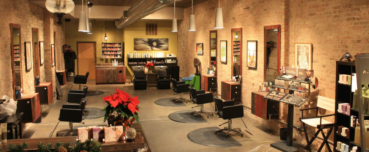 Hip Boutique Salon in Logan Square in Chicago Hero Image in Logan Square, Chicago, IL
