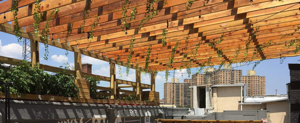 Gorgeous Rooftop Patio & Mezzanine in Brooklyn Hero Image in Prospect Lefferts Gardens, Brooklyn, NY