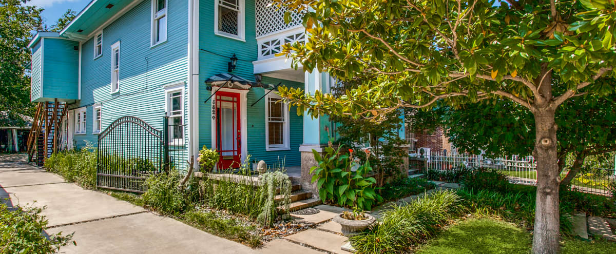 Historic Edwardian With Loads of Light and Charm in Dallas Hero Image in Junius Heights, Dallas, TX