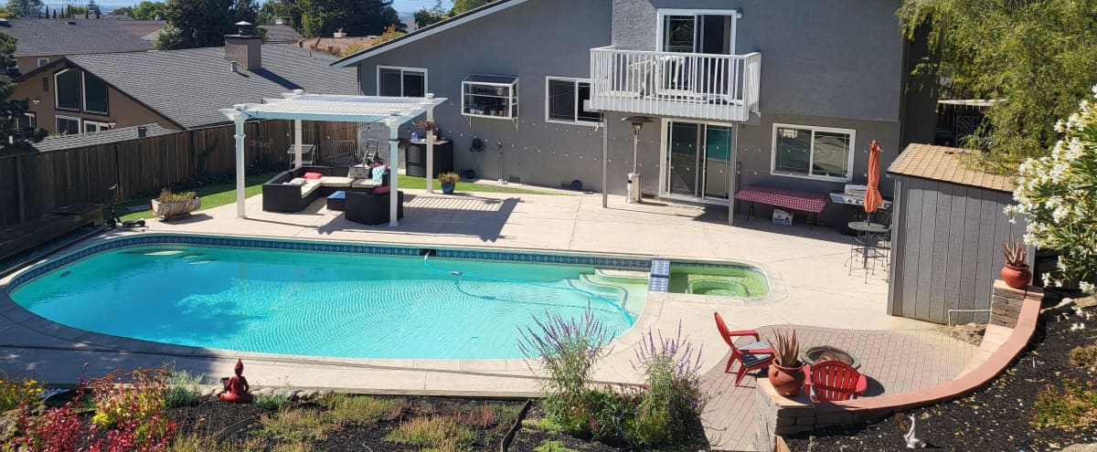 Beautiful Backyard with a Pool and a panoramic view of the valley from a vista point on the hill in Castro Valley Hero Image in undefined, Castro Valley, CA