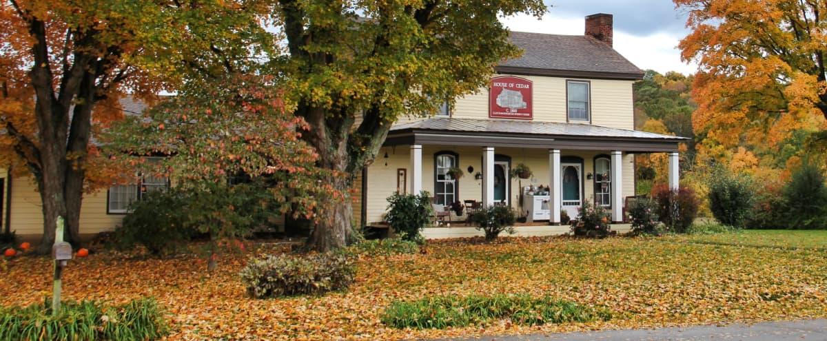 1800 Farmhouse and Mini Farm Just Outside of Nashville in Mount Juliet Hero Image in undefined, Mount Juliet, TN