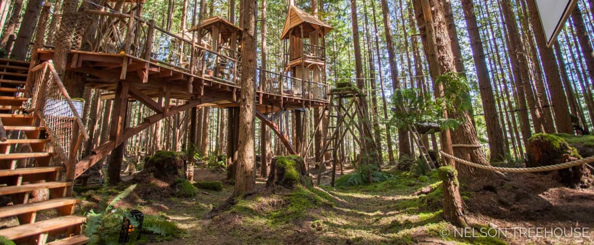 Film & Photo Location in Stunning Redmond Forest with Climb-In Theater + Yurt & Stage in Redmond Hero Image in undefined, Redmond, WA