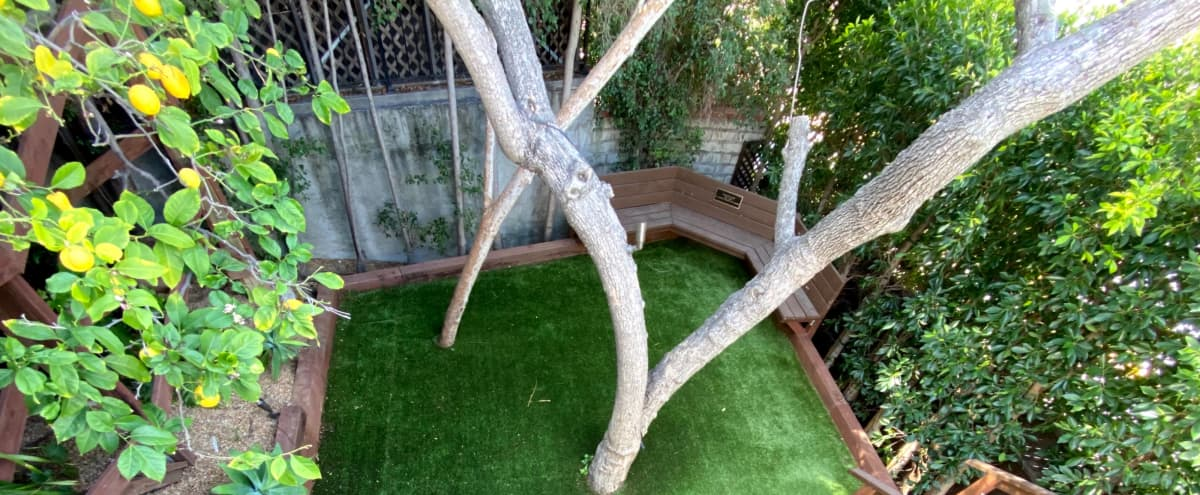 Outdoor Studio/Green Park/Backyard With Large Deck For Overhead Shooting in Los Angeles Hero Image in Central LA, Los Angeles, CA