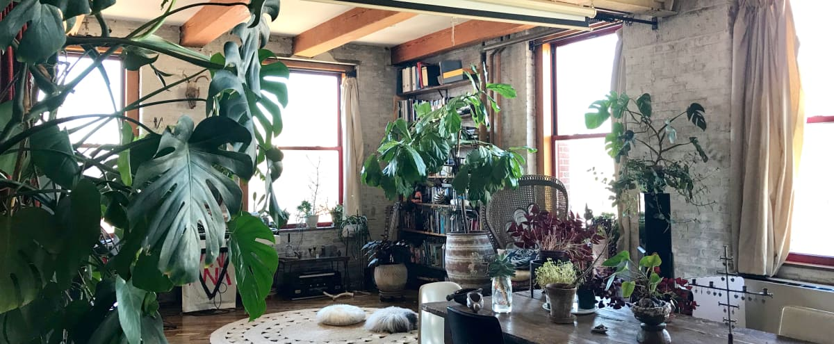Eclectic Artist Loft in Williamsburg in Brooklyn Hero Image in Williamsburg, Brooklyn, NY