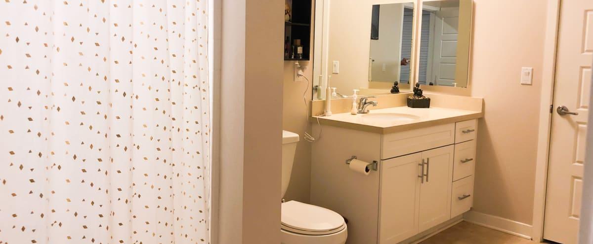 Spacious luxury apartment home in Van Nuys Hero Image in Van Nuys, Van Nuys, CA