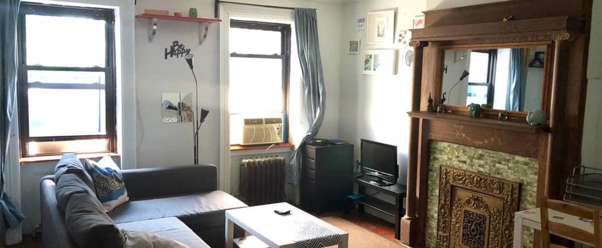 @HawkerStudios, Oasis: Crown Heights Brownstone w/ Outdoor Space in Brooklyn Hero Image in Crown Heights, Brooklyn, NY