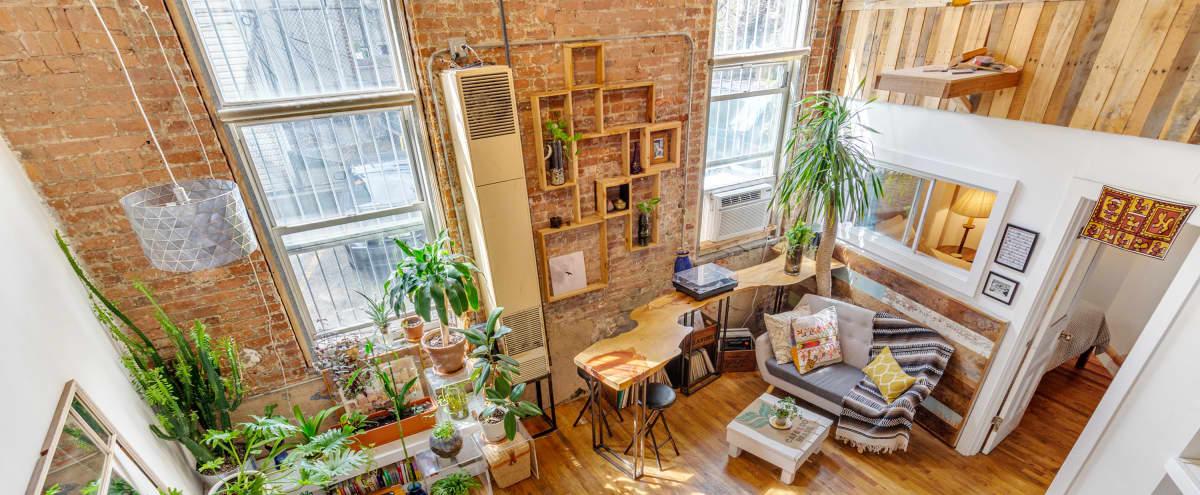 Cozy, Creative, Sunny: Factory Loft in Bushwick in Brooklyn Hero Image in Bushwick, Brooklyn, NY