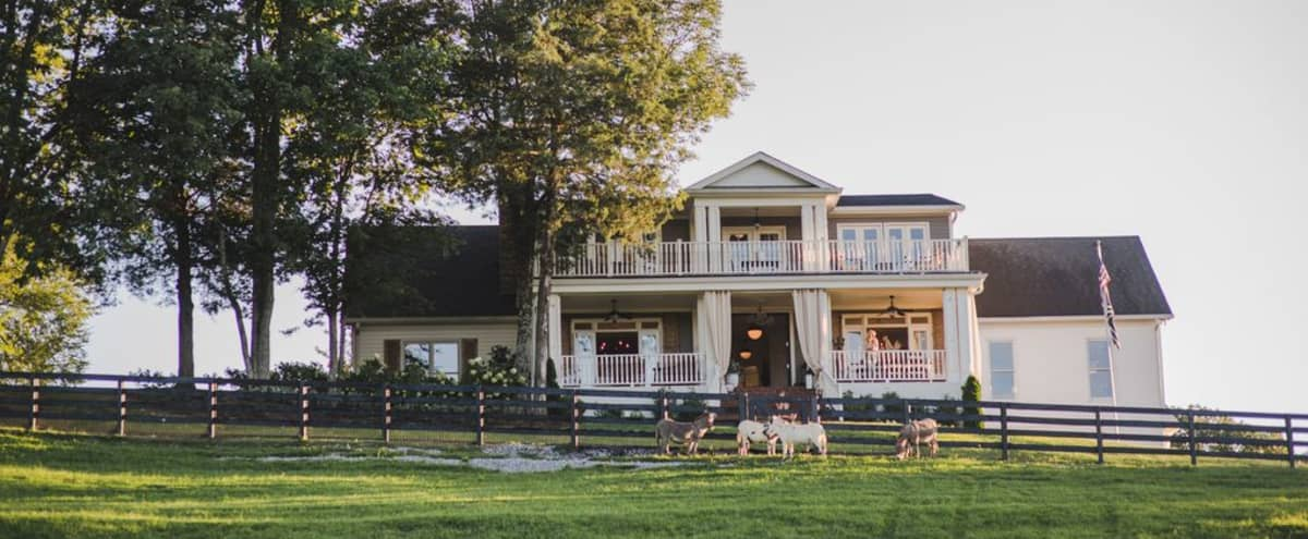 Film Location, Business Retreat, Luxury Farmhouse *Concierge Service* near Franklin/Nashville in College Grove Hero Image in undefined, College Grove, TN