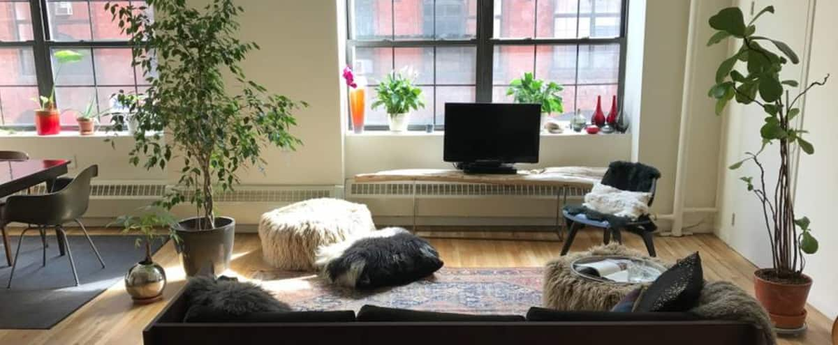 Chic sunlight filled loft apartment in the heart of Clinton Hill in Brooklyn Hero Image in Bedford-Stuyvesant, Brooklyn, NY