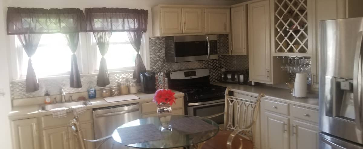 Spacious, exquisitely decorated, 3 level colonial with large porch in ELIZABETH Hero Image in undefined, ELIZABETH, NJ