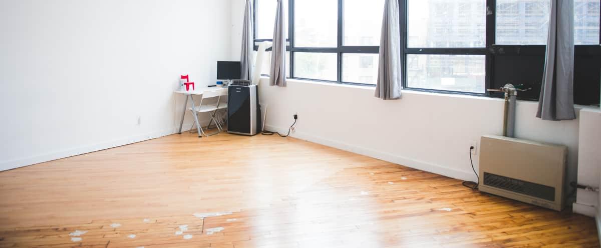 Bright Spacious Studio in Bushwick in Brooklyn Hero Image in Bushwick, Brooklyn, NY